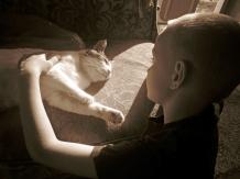 IMG_0268 kitty