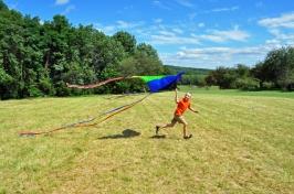 DSC_0491 kite