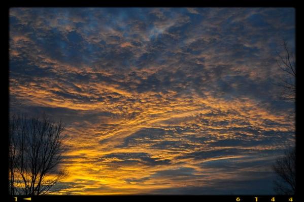 DSC_0090-1 2014-24-12 15-51-