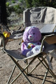 Care Bears like camping, too!